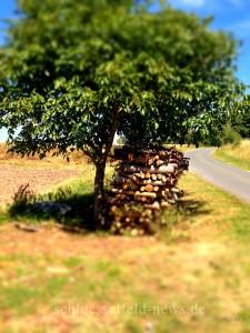 Schlüsselfeld Holz Baum Rote Steige