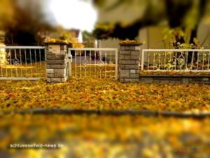 Schlüsselfeld Herbst Jahreszeit