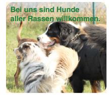 Schäferhundeverein Elsendorf Schlüsselfeld