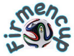 Firmen-Cup TSV Schlüsselfeld 2014 Fußball
