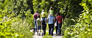Wandertag Schlüsselfeld 39 Wald Wiese Wandern Raiffeisenbank Schlüsselfeld Castellbank