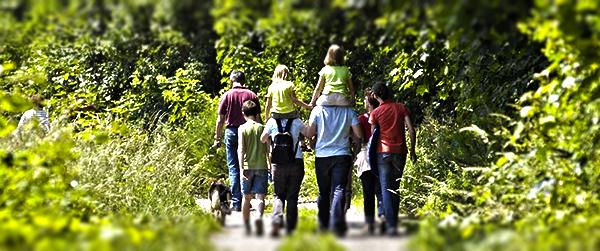 Wandertag Schlüsselfeld 2014 39 Wald Wiese Wandern Raiffeisenbank Schlüsselfeld Castellbank