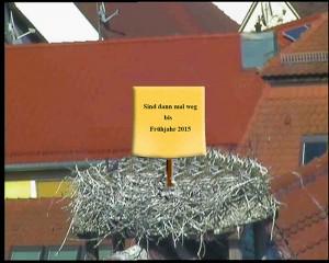 Störche Schlüsselfeld Rathausdach Sind dann mal weg bis Frühjahr 2015 Winterurlaub