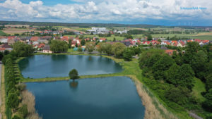 Dorfweiher in Elsendorf